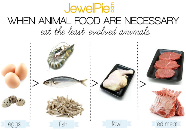 What animal food is the best for you?